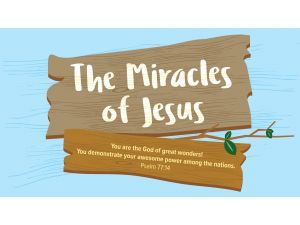 Miracles - Bundle